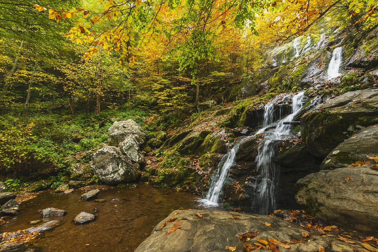 The Best Fall Getaways in Virginia