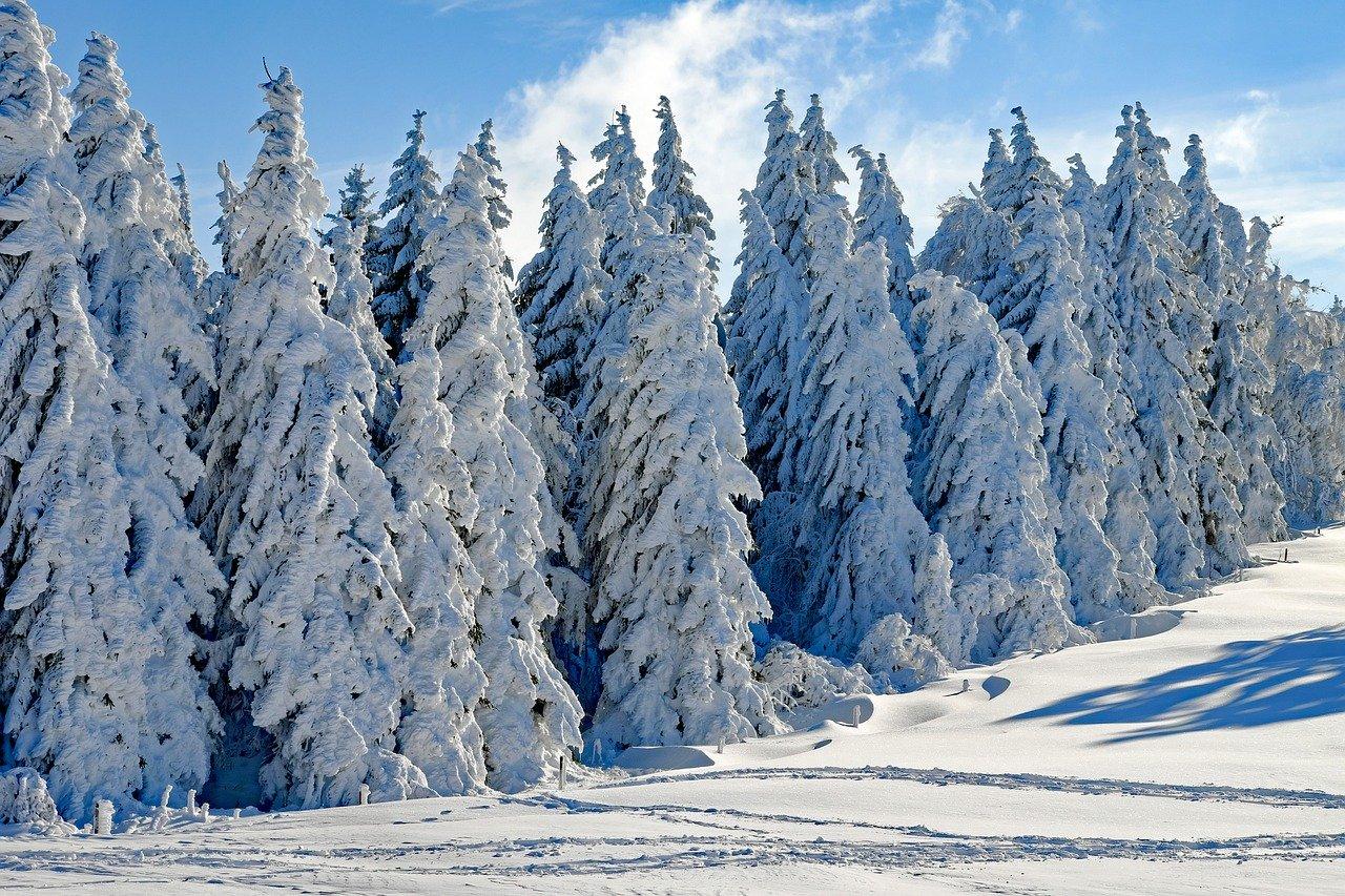 The Best Winter Getaways in Virginia